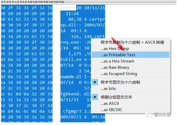 wireshark使用及实例分析 - 第25张  | 月梦工作室